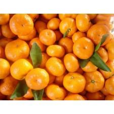 Mandarina Nacional (unidad)