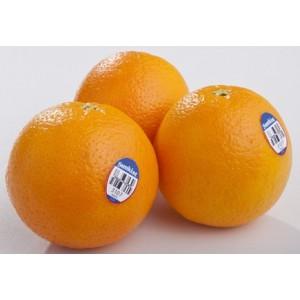 Naranja Importada (unidad)