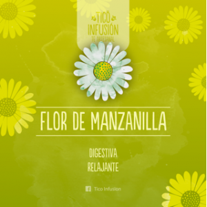Té Artesanal-Manzanilla