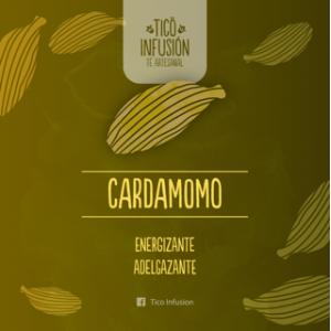 Té Artesanal-Cardamomo