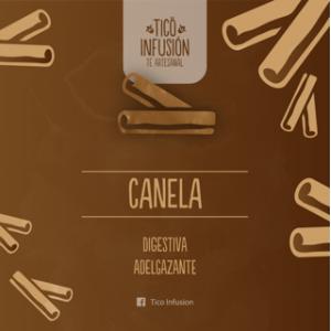 Té Artesanal-Canela