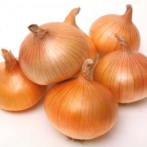 Cebolla Blanca Orgánica (kilo)